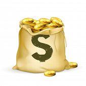 Bolsa de oro, 10eps