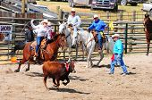 BOULDER - AUGUST 27th: unidentified female cowgirl rides in the calf roping competition at Jefferson County Fair and Rodeo on august 27, 2011 in Boulder, Montana