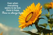 Inspirational Motivational Quote- Even When Everything  Seems To Be Lost, There Is Hope. There Is Al poster