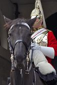 Mounted Guardsman