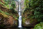 waterfall Multnomah