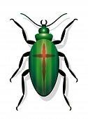 Beetle With Cross, Symbolic For Extinction Of Species And For For Decline In Insect Populations. Iso poster