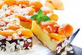 Slice of fresh baked apricot and almond pie