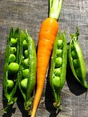The image of carrot and peas
