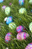 picture of easter-eggs  - easter eggs - JPG