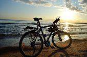 Baltic Sea At Sunset And Bike