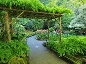 Pergola Over The Garden Walkway