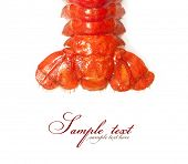 stock photo of lobster tail  - Crawfish tail close - JPG