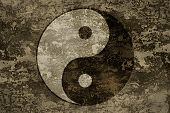 foto of yang  - The symbols of yin and yang on grange background texture - JPG