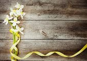 image of jonquils  - beautiful spring flowers on old wooden background - JPG