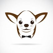 picture of mexican-dog  - Vector image of an chihuahua dog on white background - JPG