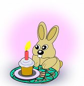 Birth Day Rabbit