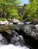 Wet Beaver Creek Fun - Arizona