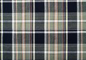 Green and dark blue plaid print as background.