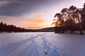 After beautiful winter sunset in the forest