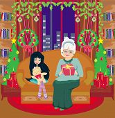 Grandmother And Granddaughter - Christmas At Home