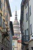 Novara (italy)