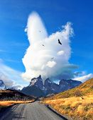 National Park Torres del Paine in southern Chile. A dirt road leads to the distant mountains. A huge cloud in the form of a burning candle flies away. Over the road is flying flock of Andean condors