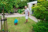 Senior Fertilising The Lawn