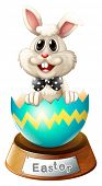 Illustration of a cracked egg with a bunny on a white background