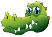Illustration of a head of a crocodile on a white background