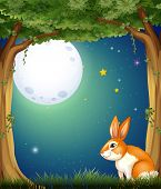 Illustration of a bunny at the forest under the bright fullmoon