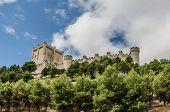 Castle Penafiel