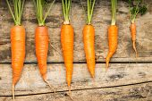 Fresh Ripe Carrots Luing On Wooden Background. Vitamins On The Table.