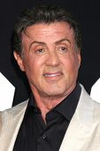 LOS ANGELES - AUG 11:  Sylvester Stallone at the
