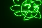 Green sun on dark wall light painting