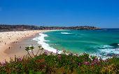 Amazing Bondi Beach In Sydney