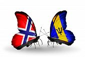 Two Butterflies With Flags On Wings As Symbol Of Relations Norway And Barbados