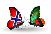 Two Butterflies With Flags On Wings As Symbol Of Relations Norway And Zambia