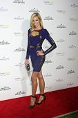 LOS ANGELES - JAN 8:  Brooke Burns at the Hallmark TCA Party at a Tournament House on January 8, 2014 in Pasadena, CA
