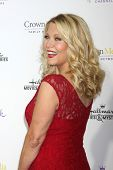 LOS ANGELES - JAN 8:  Barbara Niven at the Hallmark TCA Party at a Tournament House on January 8, 2014 in Pasadena, CA