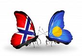 Two Butterflies With Flags On Wings As Symbol Of Relations Norway And Palau