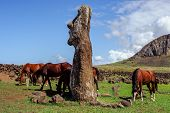 Horse near statues  on the Isla de Pascua. Rapa Nui. Easter Island
