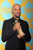 LOS ANGELES - JAN 11:  Common at the HBO Post Golden Globe Party at a Circa 55, Beverly Hilton Hotel on January 11, 2015 in Beverly Hills, CA