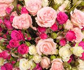 multicolor roses bouquet