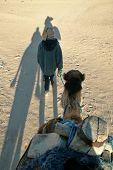 adventure, arab, arabian, arabic, arid, camel,Dromedary, desert, dry, dune, dunes, exotic, heat, hot