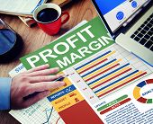 Profit Margin Businessman Working Calculating Planning Paperwork Concept