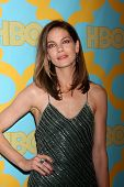 LOS ANGELES - JAN 11:  Michelle Monaghan at the HBO Post Golden Globe Party at a Circa 55, Beverly Hilton Hotel on January 11, 2015 in Beverly Hills, CA