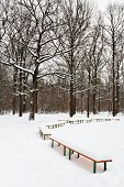 Snow Covered Benches On Glade Of City Park