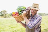Farmer carrying basket of veg on a sunny day poster