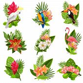 stock photo of opulence  - Exotic tropical flowers and birds icons collection with beautiful opulent green foliage arrangements abstract isolated vector illustration - JPG