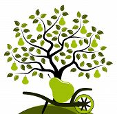 stock photo of hand-barrow  - vector pear tree and hand barrow with one big pear isolated on white background - JPG