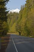 pic of snow capped mountains  - Travelling in central Oregon forests looking at a snow capped mountain - JPG