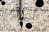 pic of rusty-spotted  - Antique feather on scratched paper and ink spot - JPG
