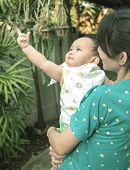 foto of mother baby nature  - baby point finger upto sky mother holding baby - JPG