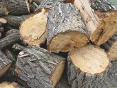 image of firewood  - cut and piled firewood brown wooden logs - JPG